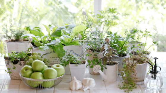 How To Clean The Kitchen And Keep It Beautiful