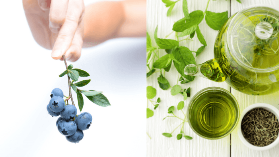 Food Synergy one of the  Anti-Aging Secrets
