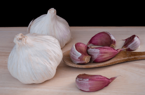 Aged Garlic Extract: 1 Incredible Way To Lower Cholesterol