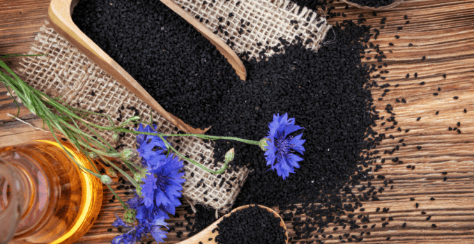 Can Nigella Sativa Make You More Intelligent?